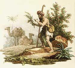 povijest_kave_-_pastir
